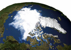 Observed Sea Ice 2005