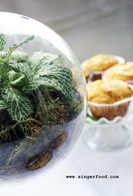 Singerfood l 39 orto nel piatto muffin alle erbe for Piccole piantagioni