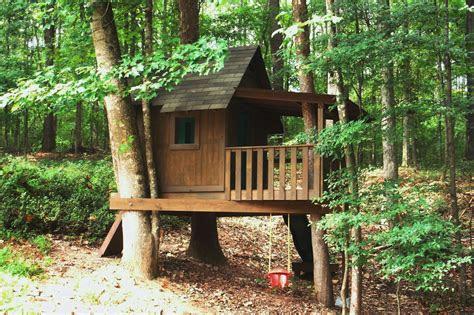 decorating  unique   build  simple treehouse