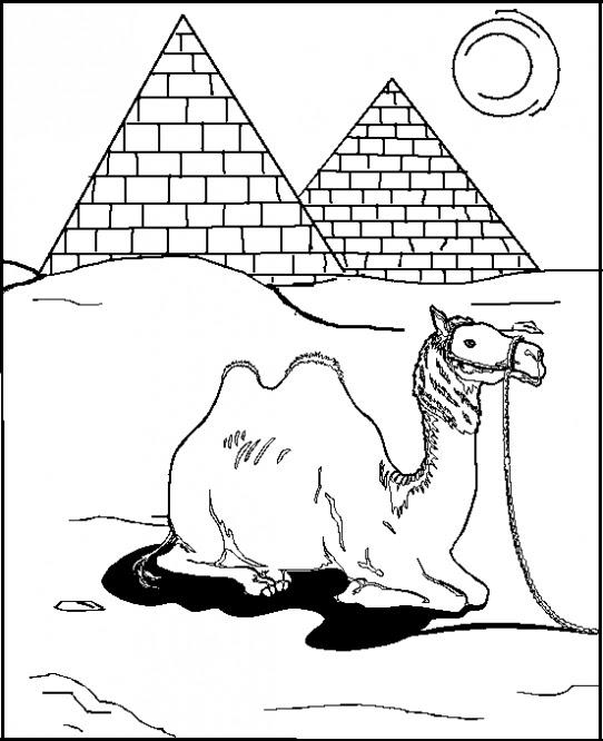 Deve Piramit Boyama Resmi Resimleri Ve Fotoğrafları