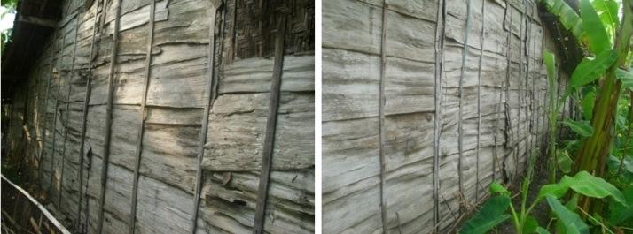 Dinding Kulit Pohon Jati