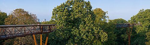 Kew Gardens Treetop Walkway - Sept 2008