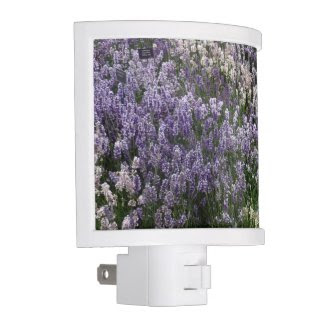 Relaxing Lavender Fields Nightlight
