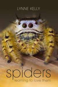 spiders-front-cov
