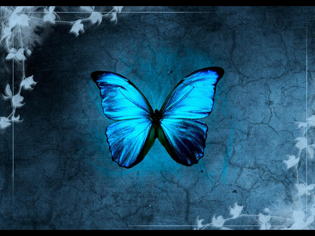 28 Beautiful Butterfly inspirations « heavensgraphix