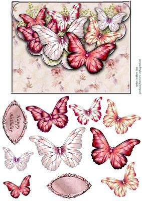 Download Strawberries & Cream Butterfly Scallop Envelope Card Front ...