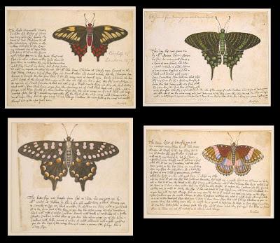 4 butterflies