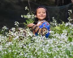 VỌNG NGUYÊN XUÂN + DÁNG CỐ NHÂN - Phêrô Nguyễn Bá Hiếu + Nốt Nhạc Trầm