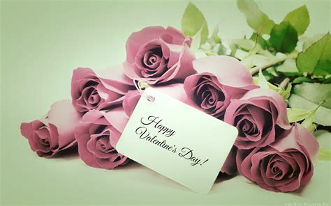 Happy Valentine?s Day, Purple Roses widescreen wallpaper