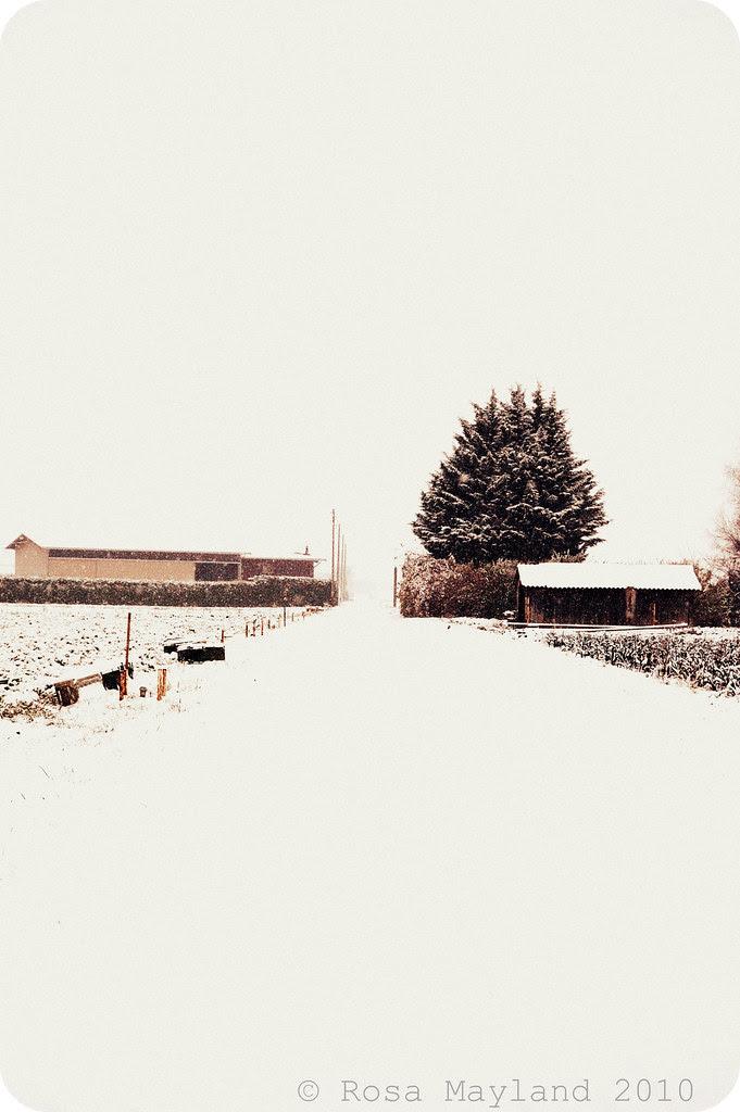 Snow Veyrier 8.1 bis
