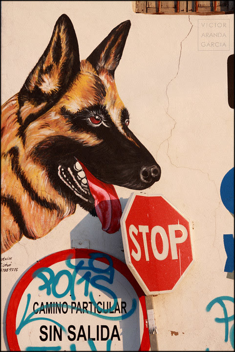 Lolli-stop