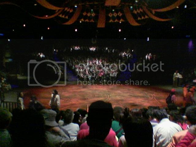 Lion King Show Stage