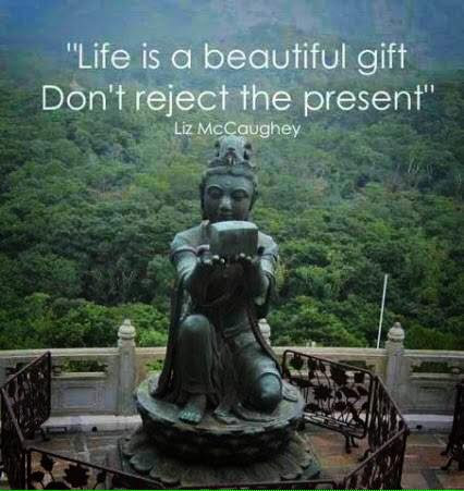 Best Life Is A Beautiful Gift Quotes