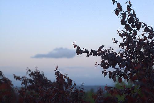 5/13. Sunrise/Sunset