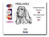 Bassethounds kennel Prdlavka