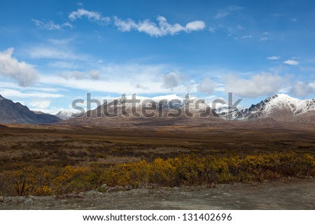 Alaska Wilderness Stock Photos, Illustrations, and Vector Art