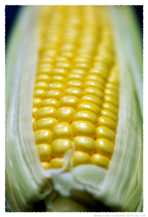 sweet corn© by Haalo