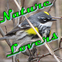 banner for Nature Lovers blog