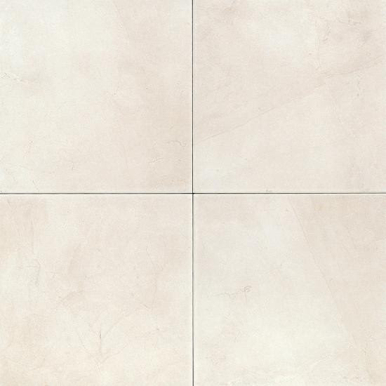wall and floor tile
