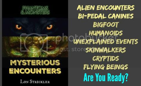 photo book-mysteriousencounters-small_zpsbhwdnrjz.jpg