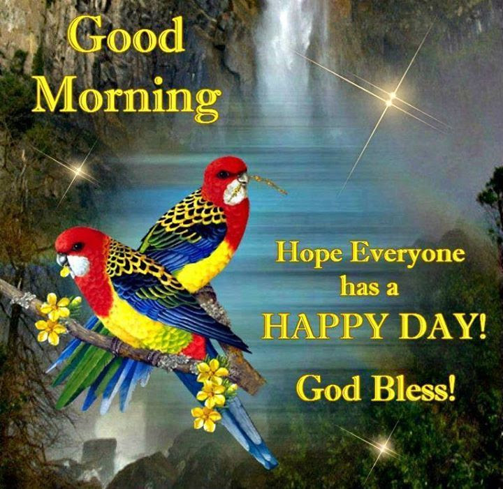 Good Morning Have A Happy Day Pictures Photos And Images For