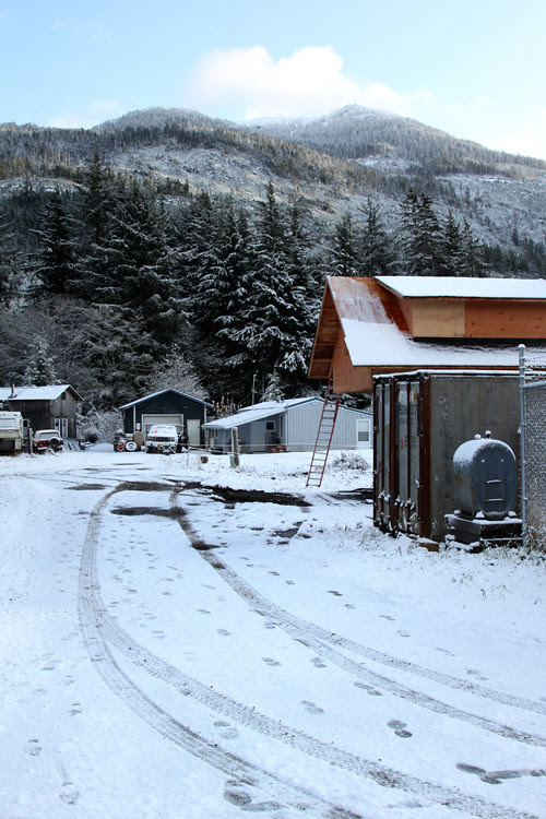 view of snowy downtown Kasaan, Alaska