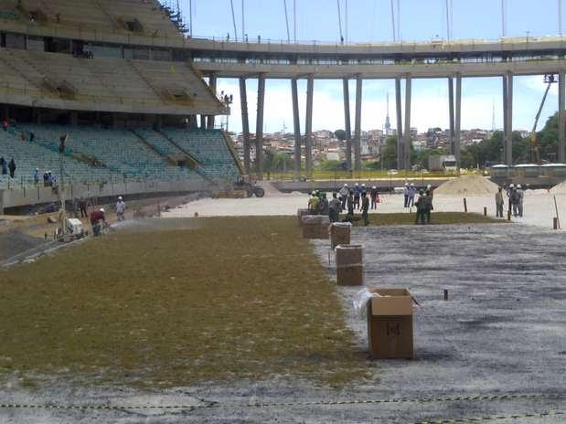Gramado começou a ser plantado do lado do gol que fica para a Ladeira da Fonte Foto: Lindomar Assis / Lindomar Assis Oliveira - Especial para o Terra