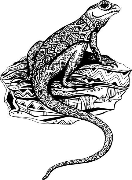 Free lizard vector free vector download (113 Free vector