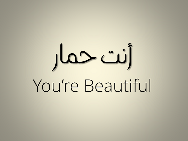 Seriously We All Need To Learn Arabic It Is A Beautiful Language
