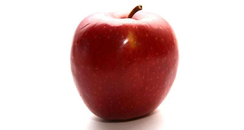 Apfelpresse - Apfelsaft selber machen - Apfelmarmelade