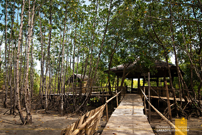Cottages for Rent at Kalibo's Bakhawan Eco Park