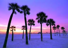 St. Petersburg-Clearwater, Florida