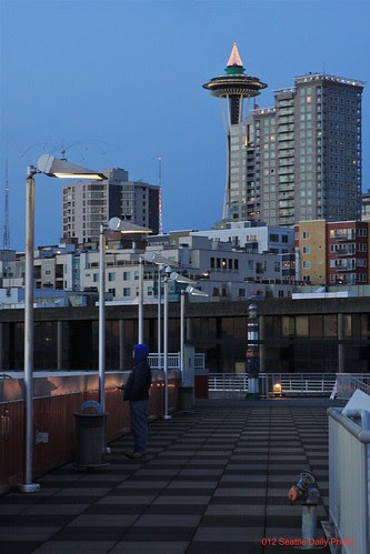 Watching for Angles by Seattle Daily Photo