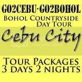Cebu City + Bohol Countryside Day Tour Itinerary 3 Days 2 Nights Package
