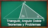 Triangulo con Angulo Doble. Teoremas y Problemas (Spanish-language version, ESL).
