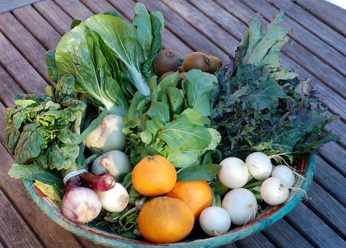 Bountiful winter produce box from Eatwell Farm: Week 1