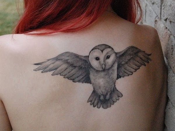 Vas A Tatuarte Un Animal Conoce El Significado Del Tatuaje De Búho