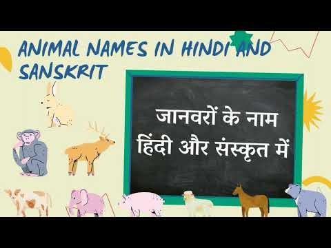 30 Animals Name in Sanskrit and Hindi with Pictures | 30 जानवरों के नाम संस्कृत और हिंदी में चित्रों के साथ