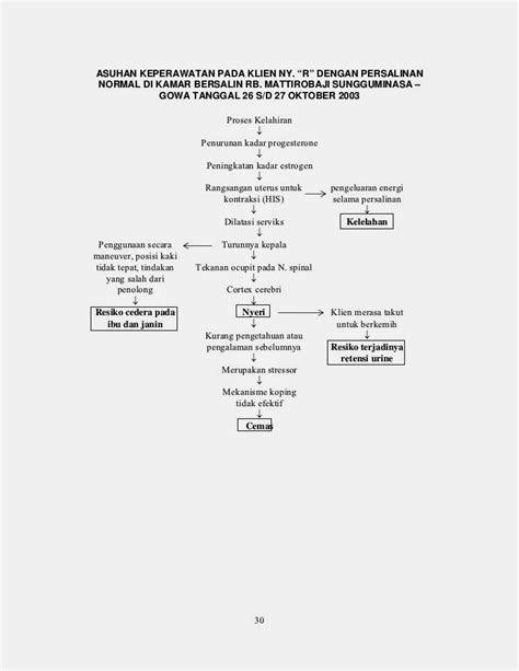 DAVID RHIO AGATHA: Pathway Persalinan Normal
