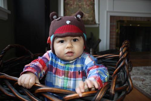 in a basket hat 1
