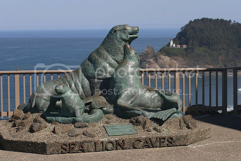 Places to Visit Along the Oregon Coast