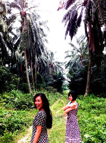 Actresses in tropical jungle