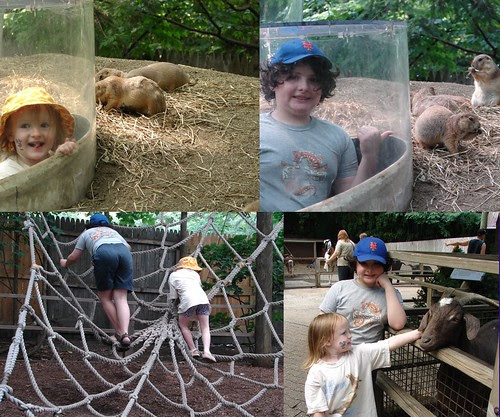 Children Zoo 3