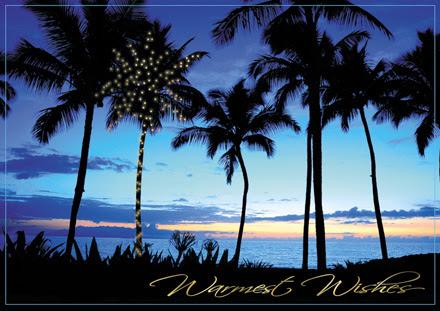 Island Christmas Cards Tropical Palmtree Christmas Holiday Cards