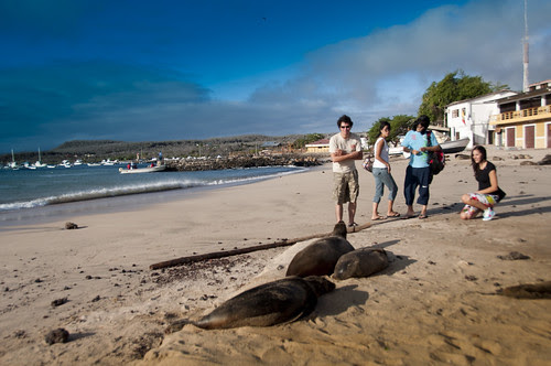Descubriendo Galápagos