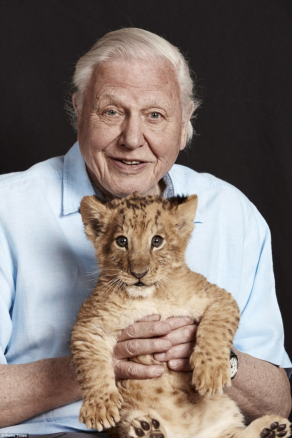 Image result for attenborough