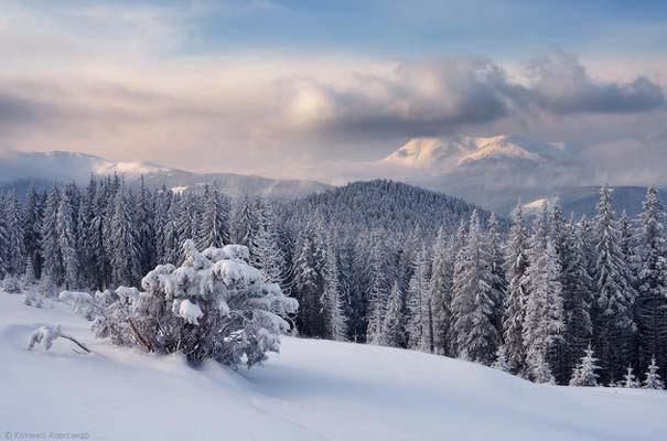 Χειμώνας στα Καρπάθια Όρη (9)