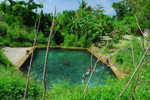 Vanuatu 519