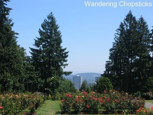 Day 19 The International Rose Test Garden - Portland - Oregon 1