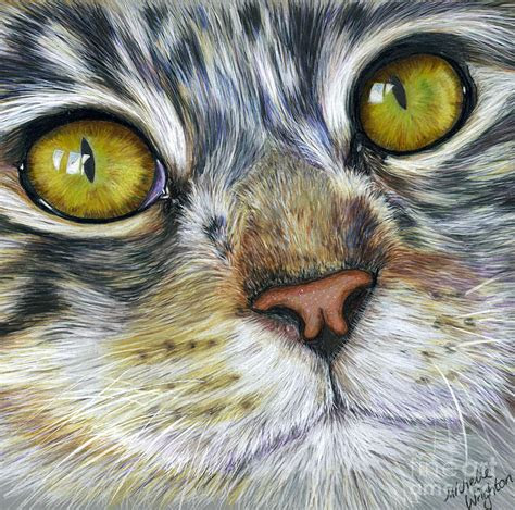 creating realistic texture  colored pencil ms